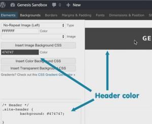 Genesis Extender CSS Styling GUI WYSIWYG